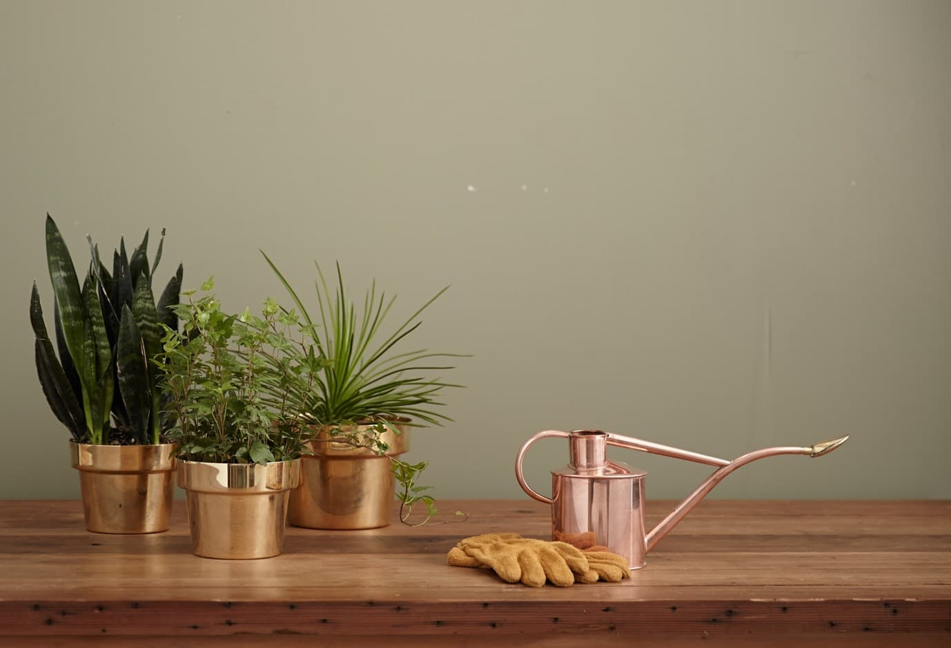 A wooden table with indoor plants in copper plant pots and rose gold watering can.